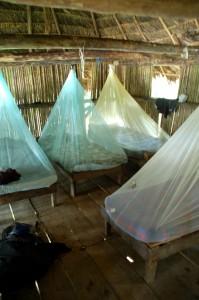 Dschungelunterkunft Ecuador